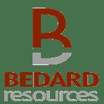 Logo BR En Vertical
